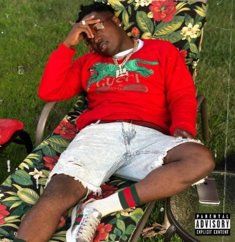 Troy Ave - More Money More Problem (Mixtape)