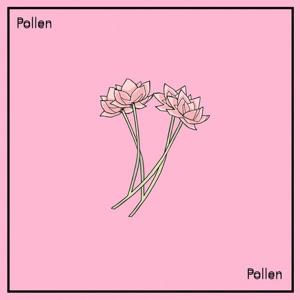 New Album: Jeff Kaale - Pollen