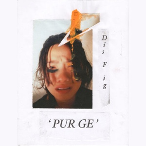 New Album: Dis Fig - Purge