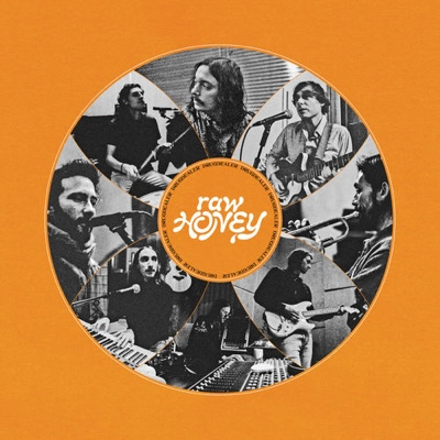 New Album: Drugdealer - Raw Honey