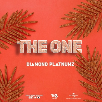 New Video: Diamond Platnumz – The One