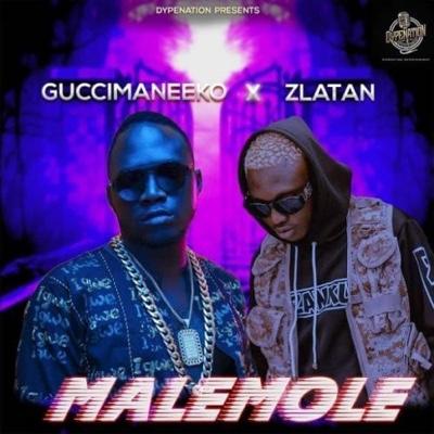 New Music: Guccimaneeko & Zlatan – Malemole