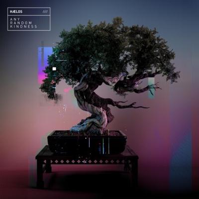 New Album: Hælos - Any Random Kindness