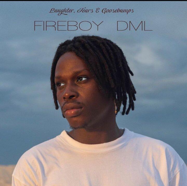 New Album: Fireboy DML - Laughter Tears & Goosebumps